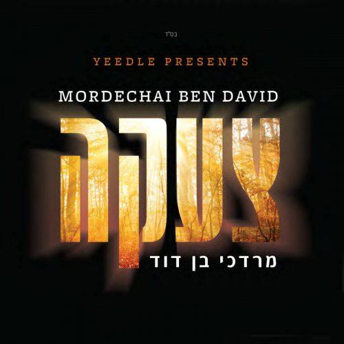 כבשה אחת-מרדכי בן דוד