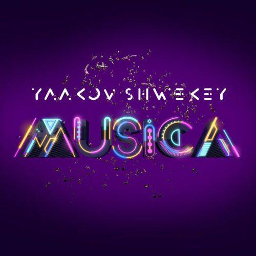 כל הנשמה-יעקב שוואקי   |   Kol Haneshama-Yaakov Shwekey